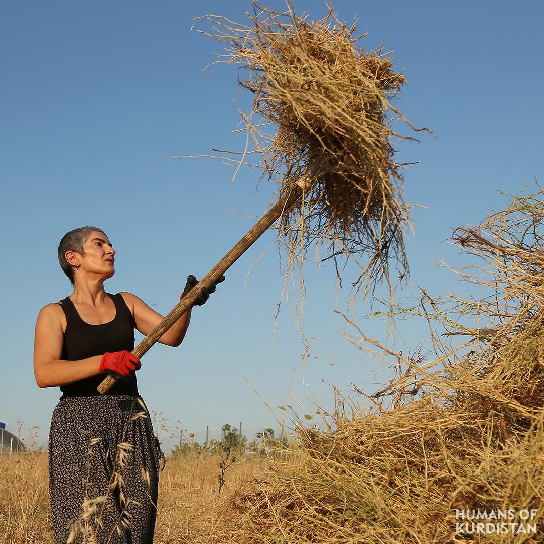 Humans of Kurdistan - North 02