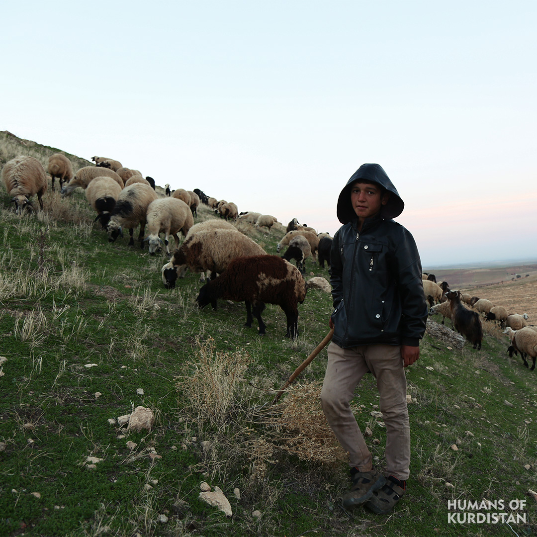 Humans of Kurdistan - North 09